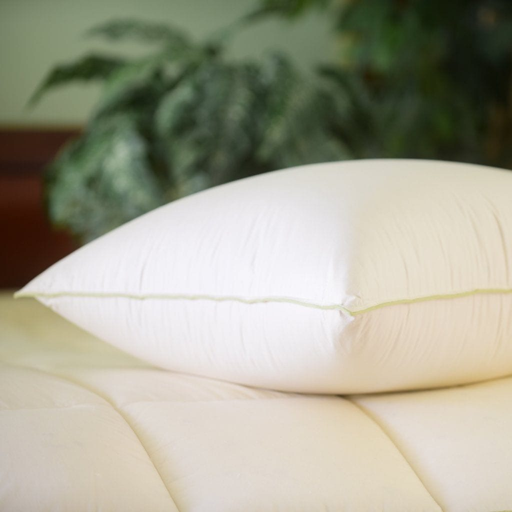 Down & Feather Company Natural Nights Goose Down Pillow