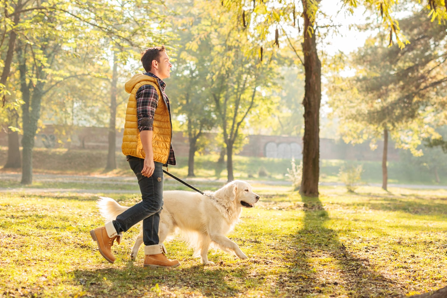man walking through the park with his dog